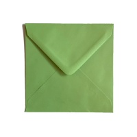 Plic Verde Deschis 13x13 cm